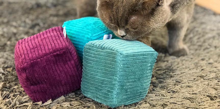 Die Smelly Cubes