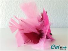 Feder-Spielelement Pink Rose