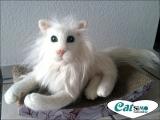 Ihre Katze aus eigenem Tierhaar (30-35 cm)