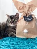 Ostertüte für Katzen (limitiert)