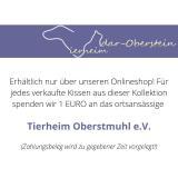 XL-Schmusekissen für Katzen (Jubiläums-Edition)