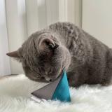 Schnurrprise-Box für Katzen