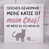 Leinwand für Katzenfreunde 25x25 weiss (personalisierbar)